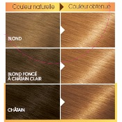 Garnier Belle Color Coloration Semi Permanent 7.33 Blond Miel Ambre